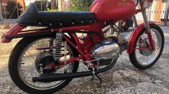Motobi Catria sport epoca